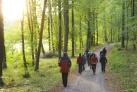 Wanderung in Masuren-in Lotzener Wald