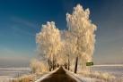 Masuren - Dorf Kruklin im Winter