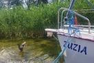 Masuren urlaub Hafen in Gizycko
