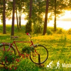 Individuelle Radreise in Masuren mit Gepäcktransport (8 Tagen per Rad)