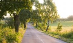 Masuren Morgen auf der Strasse