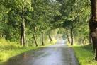 Radtouren Masuren Polen
